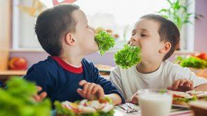 Terapia nutritionala in diabetul zaharat pentru copii si adolescenti