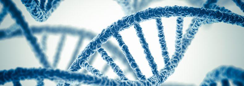 Genetica in diabet