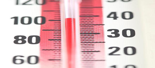 Temperatura optima pentru insulina